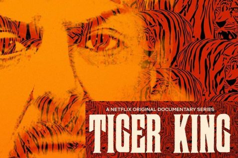 Tiger King Review